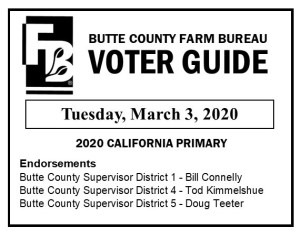 BCFB Voter Guide March 2020